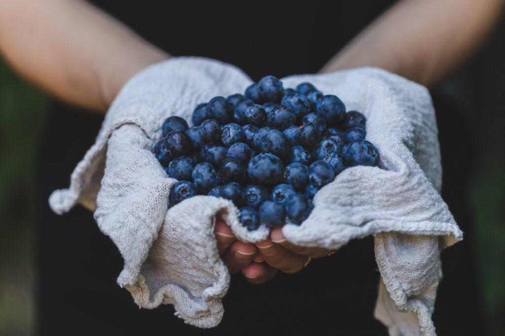 Acai Berry Extreme Onderzoeken